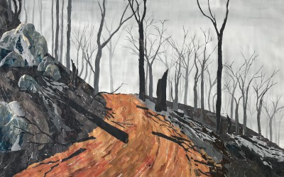After the Fires: Ray Monde ~ Saturday 5th December 2020